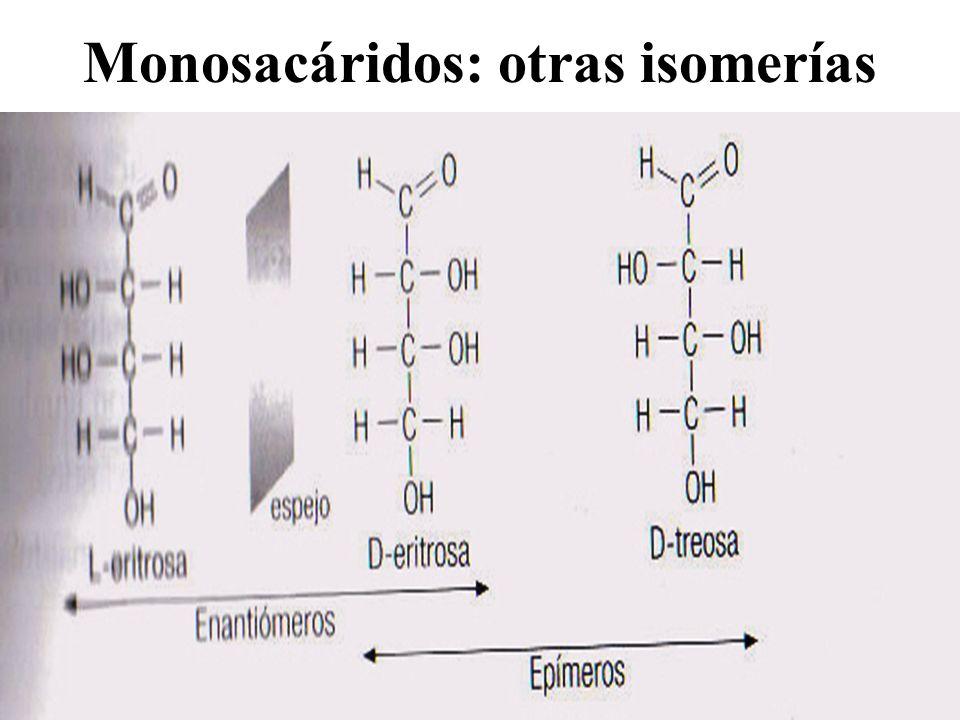 Monosacáridos: otras isomerías