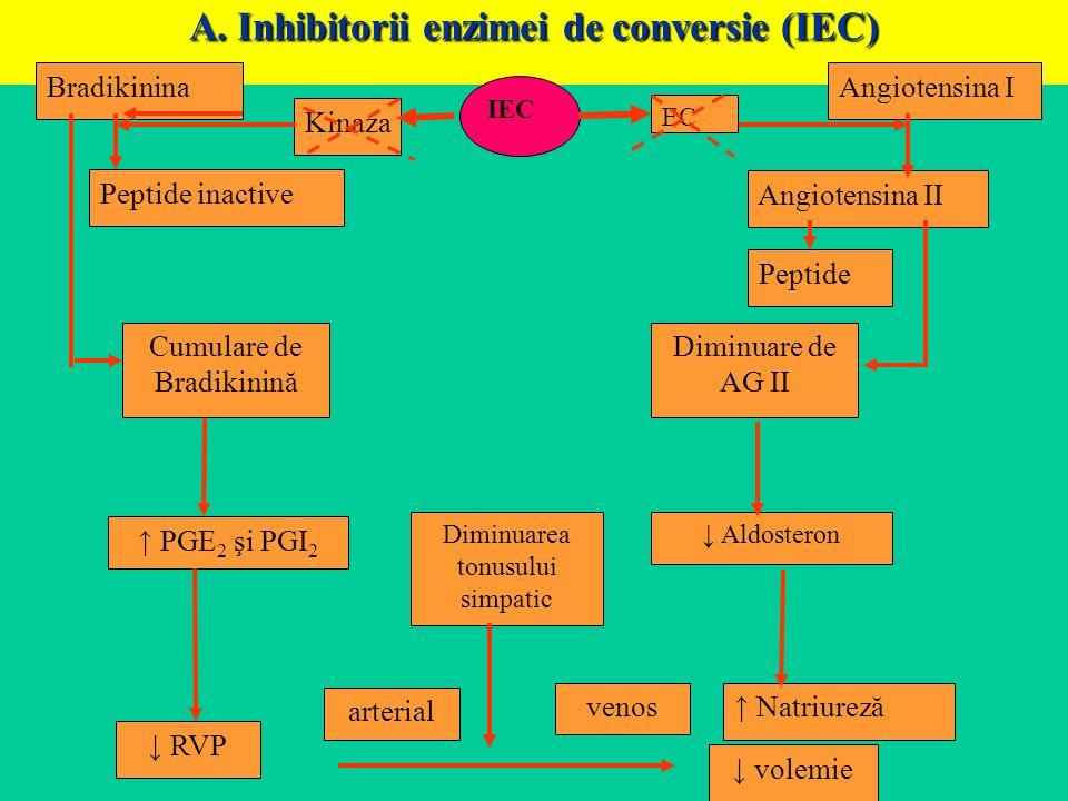 A. Inhibitorii enzimei de conversie (IEC) Bradikinina Peptide inactive Kinaza IEC EC Angiotensina II Peptide Cumulare de Bradikinină Diminuare de AG I