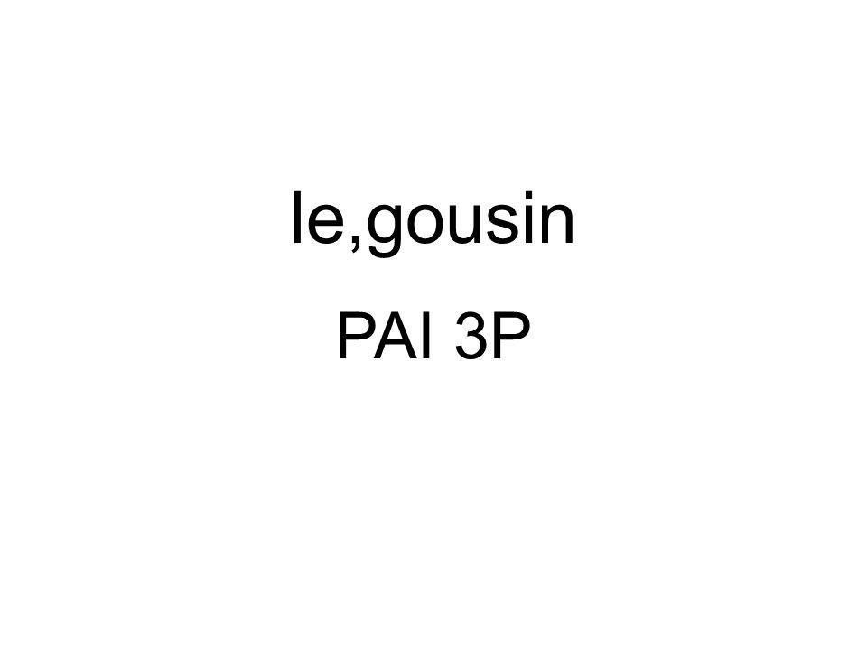 PAI 3P le,gousin