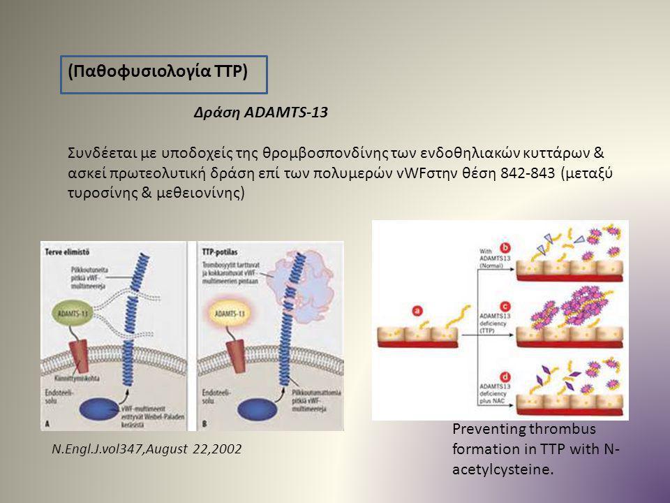 (Παθοφυσιολογία TTP) Συνδέεται με υποδοχείς της θρομβοσπονδίνης των ενδοθηλιακών κυττάρων & ασκεί πρωτεολυτική δράση επί των πολυμερών vWFστην θέση 84