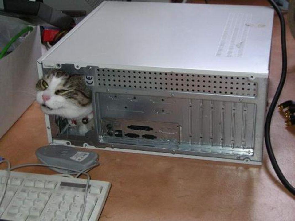 Πώς να χρησιμοποιήσετε ένα ποντίκι
