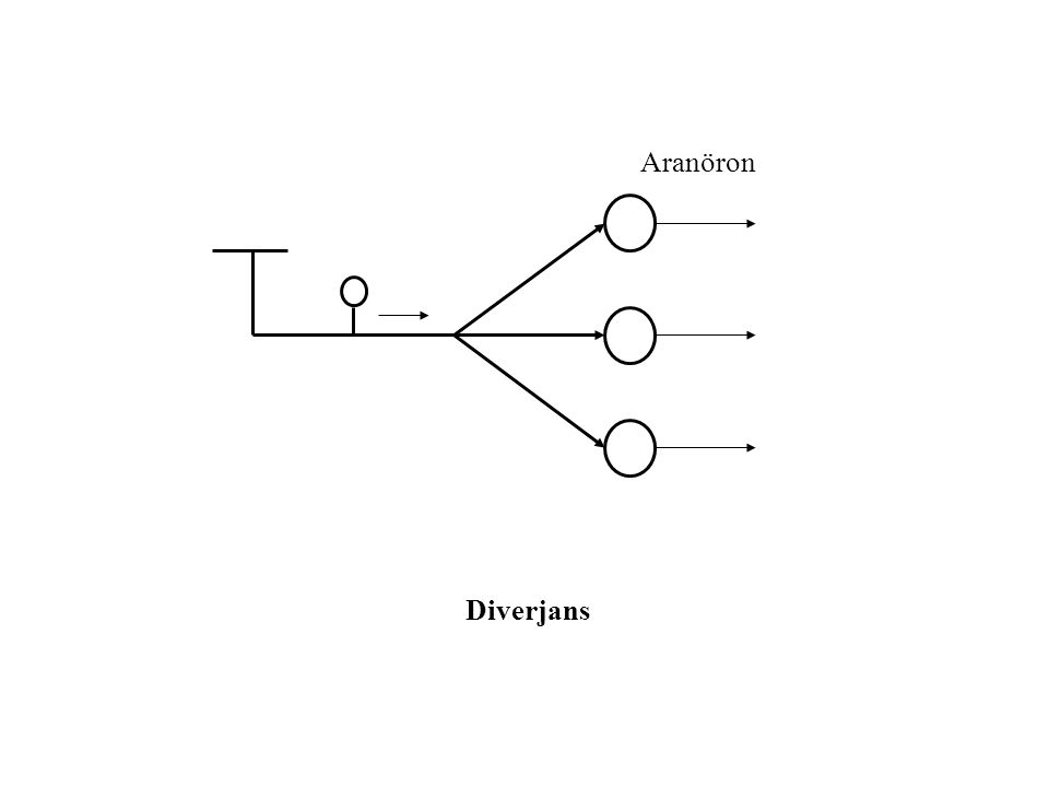 Aranöron Diverjans