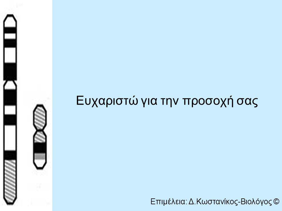 Ευχαριστώ για την προσοχή σας Επιμέλεια: Δ.Κωστανίκος-Βιολόγος ©