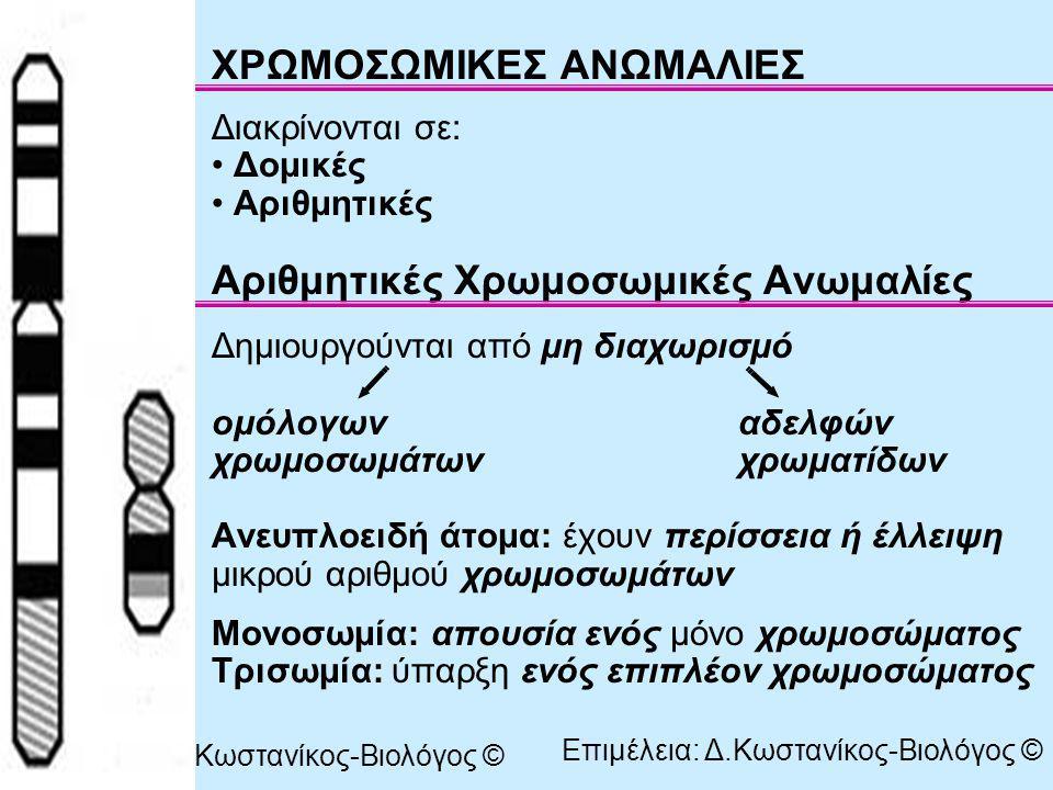 Μονοσωμία: θανατηφόρος διότι τα χρωμοσώματα (με εξαίρεση τα φυλετικά) και τα γονίδια πρέπει να βρίσκονται σε δύο «δόσεις» Αριθμητικές Χρωμοσωμικές Ανωμαλίες: στα αυτοσωμικά χρωμοσώματα στα φυλετικά χρωμοσώματα Αυτοσωμικά Τρισωμία 13 και τρισωμία 18: εμφανίζουν βαρύτερα συμπτώματα από το σύνδρομο Down επειδή τα χρωμοσώματα 13 και 18 είναι μεγαλύτερα σε μέγεθος και περιέχουν περισσότερα γονίδια Σύνδρομο Down Τρισωμία 13 Τρισωμία 18 Επιμέλεια: Δ.Κωστανίκος-Βιολόγος ©