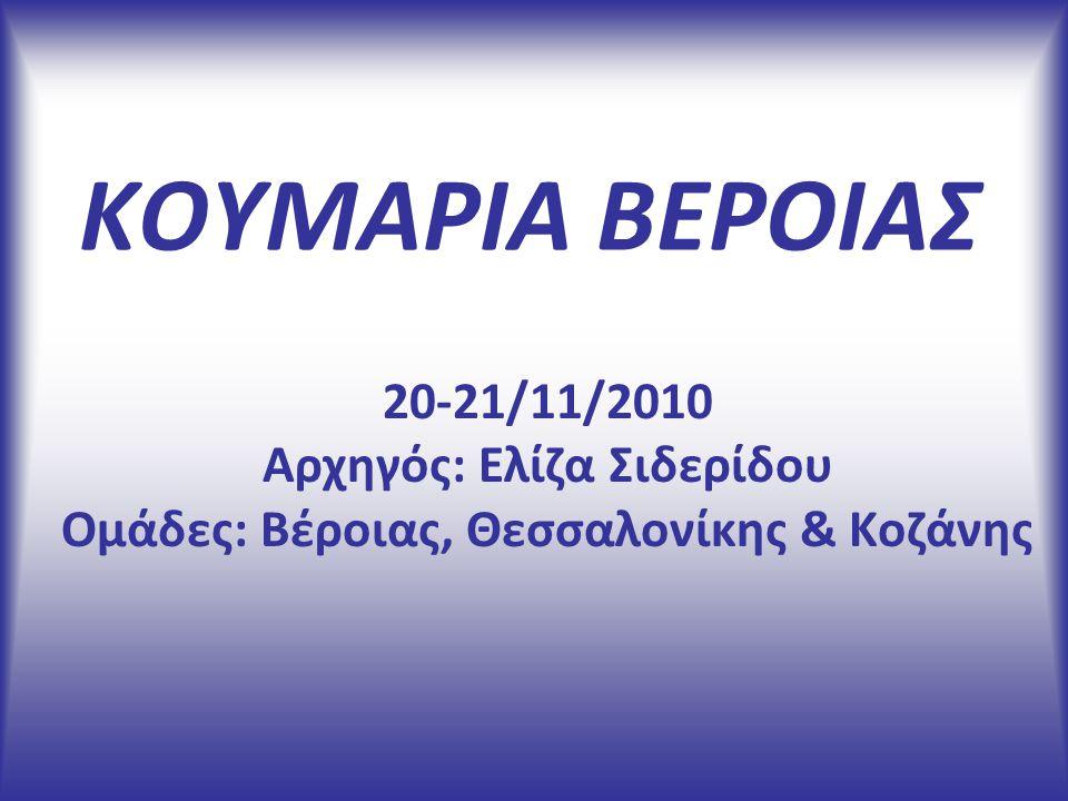 ΚΟΥΜΑΡΙΑ ΒΕΡΟΙΑΣ 20-21/11/2010 Αρχηγός: Ελίζα Σιδερίδου Ομάδες: Βέροιας, Θεσσαλονίκης & Κοζάνης