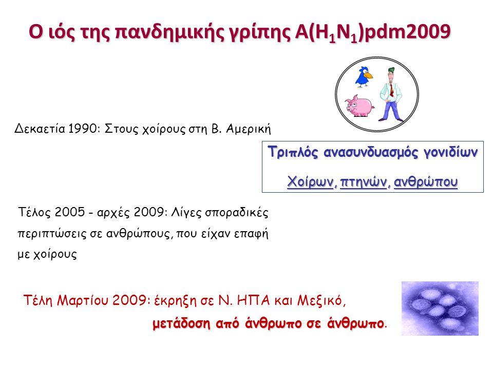 Ο ιός της πανδημικής γρίπης Α(Η 1 Ν 1 )pdm2009 Δεκαετία 1990: Στους χοίρους στη Β. Αμερική Τέλος 2005 - αρχές 2009: Λίγες σποραδικές περιπτώσεις σε αν