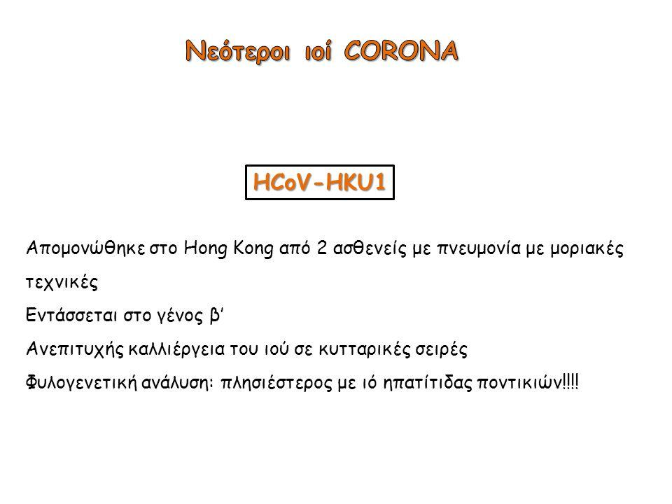 HCoV-HKU1 Απομονώθηκε στο Hong Kong από 2 ασθενείς με πνευμονία με μοριακές τεχνικές Εντάσσεται στο γένος β' Ανεπιτυχής καλλιέργεια του ιού σε κυτταρι