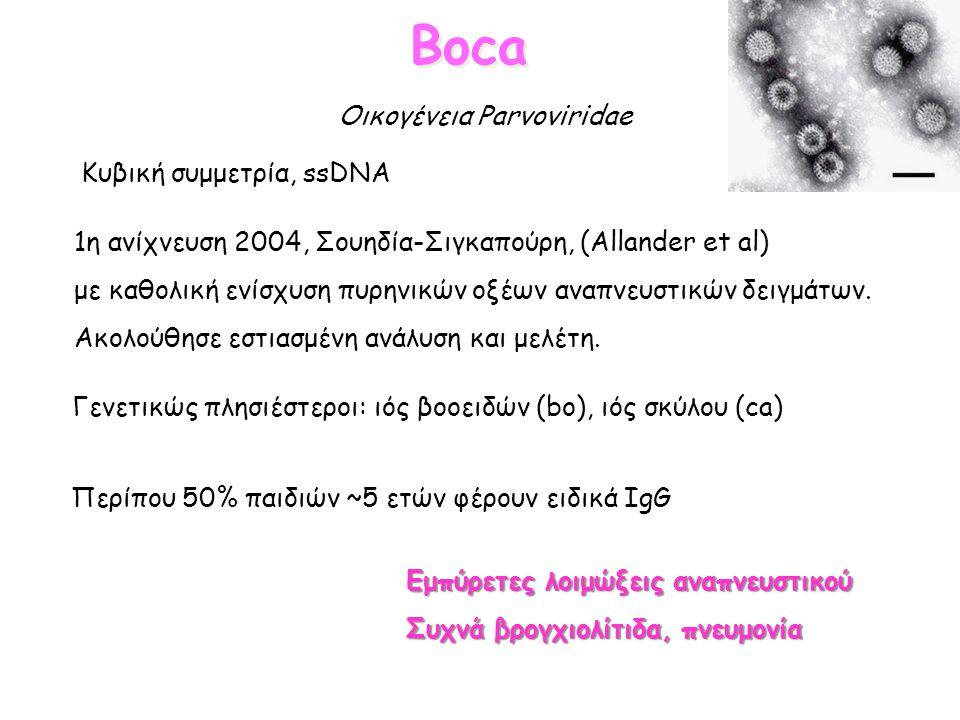 Boca Κυβική συμμετρία, ssDNA 1η ανίχνευση 2004, Σουηδία-Σιγκαπούρη, (Allander et al) με καθολική ενίσχυση πυρηνικών οξέων αναπνευστικών δειγμάτων. Ακο