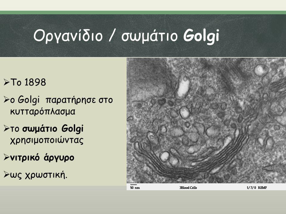 Οργανίδιο / σωμάτιο Golgi  Το 1898  ο Golgi παρατήρησε στο κυτταρόπλασμα  το σωμάτιο Golgi χρησιμοποιώντας  νιτρικό άργυρο  ως χρωστική.