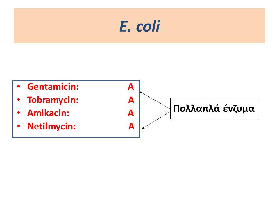 Ε. coli Gentamicin: A Tobramycin: Α Amikacin: A Netilmycin:A Πολλαπλά ένζυμα
