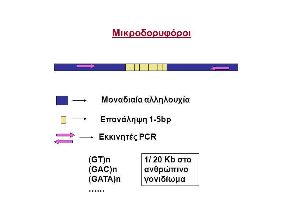 Mοναδιαία αλληλουχία Εκκινητές PCR Eπανάληψη 1-5bp Μικροδορυφόροι (GT)n (GAC)n (GATA)n …… 1/ 20 Kb στο ανθρώπινο γονιδίωμα