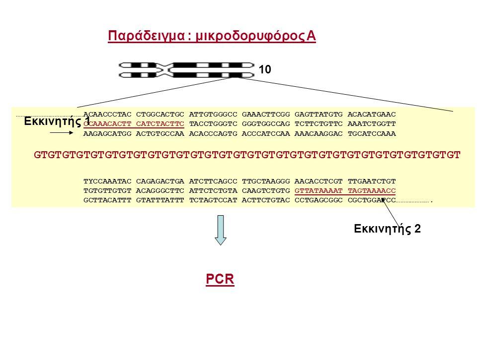 6% πολυακρυλαμίδη 0.5x TBE, 7 M Urea Marker 1 2 100 104 108 112 116 120 (bp) 34 1 2 3 2 44 4 5 PCR DNAs (1, 2, 3, 4) PCR εκκινητές (σήμανση του εκκινητή 1 με 32 P) 1 234 Ηλεκτροφόρηση Αυτοραδιογραφία Πειραματική διαδικασία