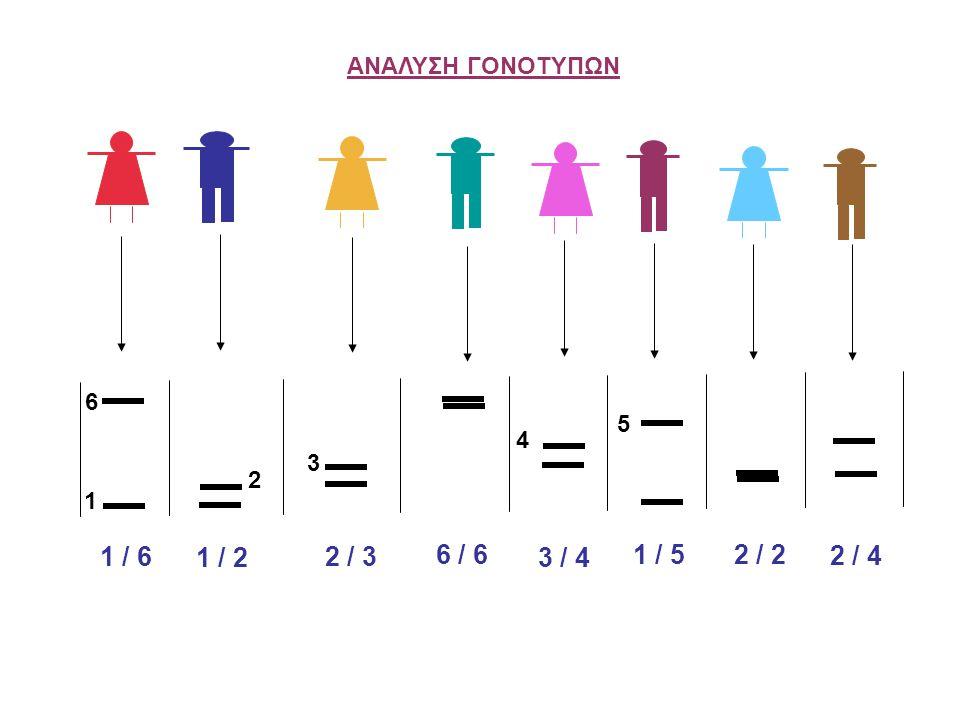 Συχνότητα αλληλομόρφου Ποσοστό ετεροζυγωτίας γενετικού δείκτη Αριθμός εμφανίσεων του αλληλομόρφου Αριθμός χρωμοσωμάτων που εξετάζονται Αριθμός ετερόζυγων ατόμων Σύνολο ατόμων Χ 100 %