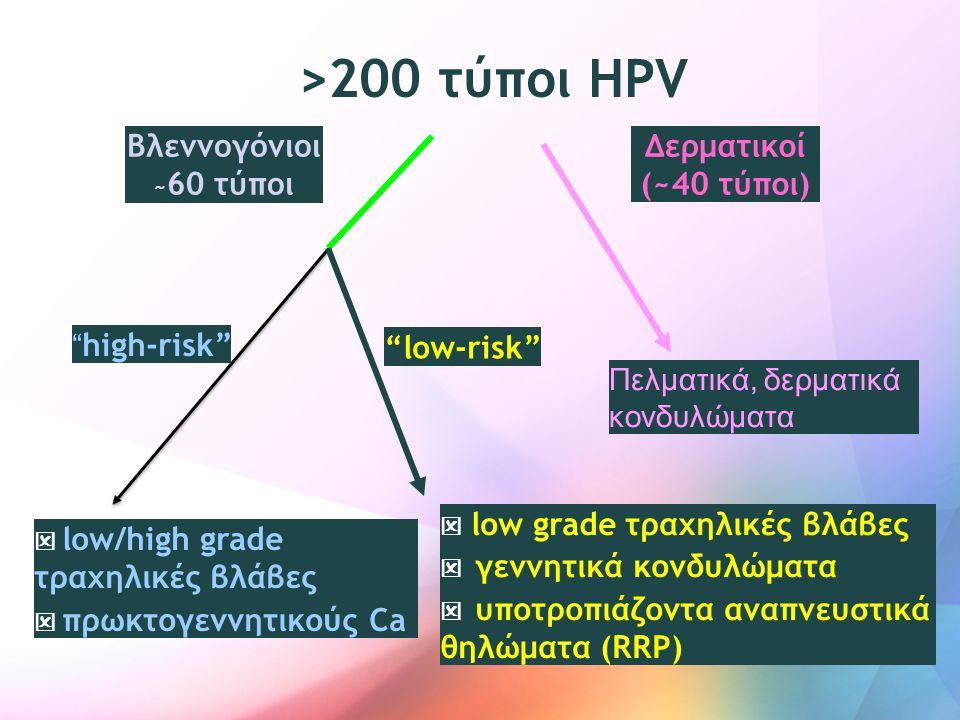 """>200 τύποι HPV Βλεννογόνιοι ~ 60 τύποι Πελματικά, δερματικά κονδυλώματα Δερματικοί (~40 τύποι) """" high-risk""""  low/high grade τραχηλικές βλάβες  πρωκτ"""