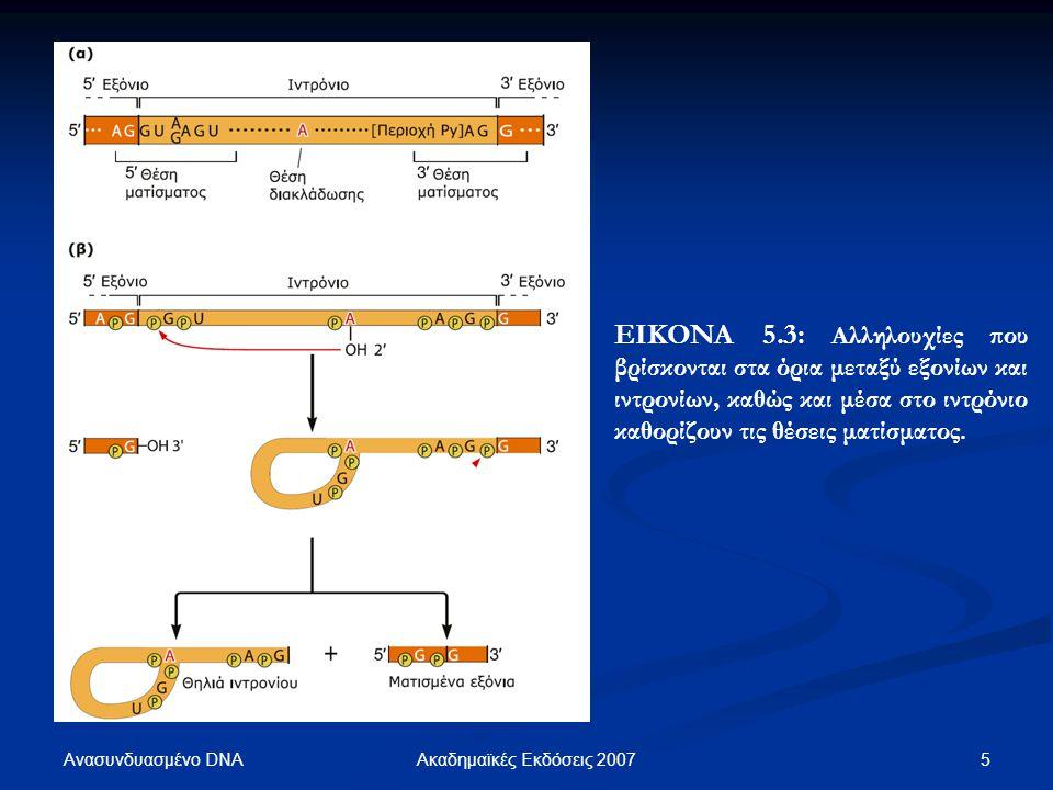 Ανασυνδυασμένο DNA 5Ακαδημαϊκές Εκδόσεις 2007 ΕΙΚΟΝΑ 5.3: Αλληλουχίες που βρίσκονται στα όρια μεταξύ εξονίων και ιντρονίων, καθώς και μέσα στο ιντρόνι