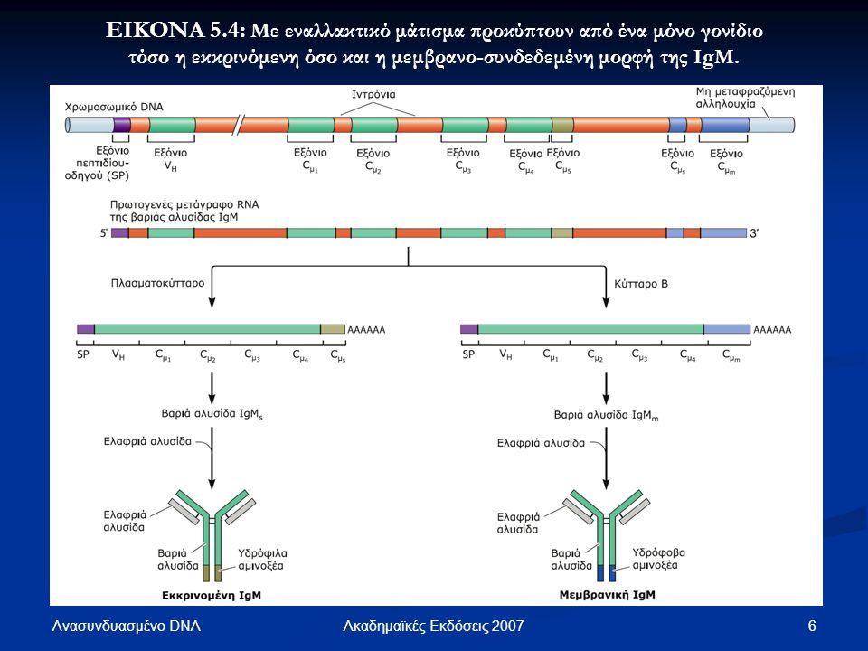 Ανασυνδυασμένο DNA 6Ακαδημαϊκές Εκδόσεις 2007 ΕΙΚΟΝΑ 5.4: Με εναλλακτικό μάτισμα προκύπτουν από ένα μόνο γονίδιο τόσο η εκκρινόμενη όσο και η μεμβρανο