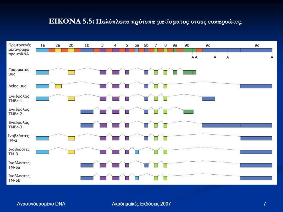 Ανασυνδυασμένο DNA 18Ακαδημαϊκές Εκδόσεις 2007 ΕΙΚΟΝΑ 5.15: ΕΙΚΟΝΑ 5.15: Από τη στοιχειοθεσία του RNA προκύπτουν ιστο- ειδικές μορφές του mRNA της ανθρώπινης απολιποπρωτεΐνης Β.