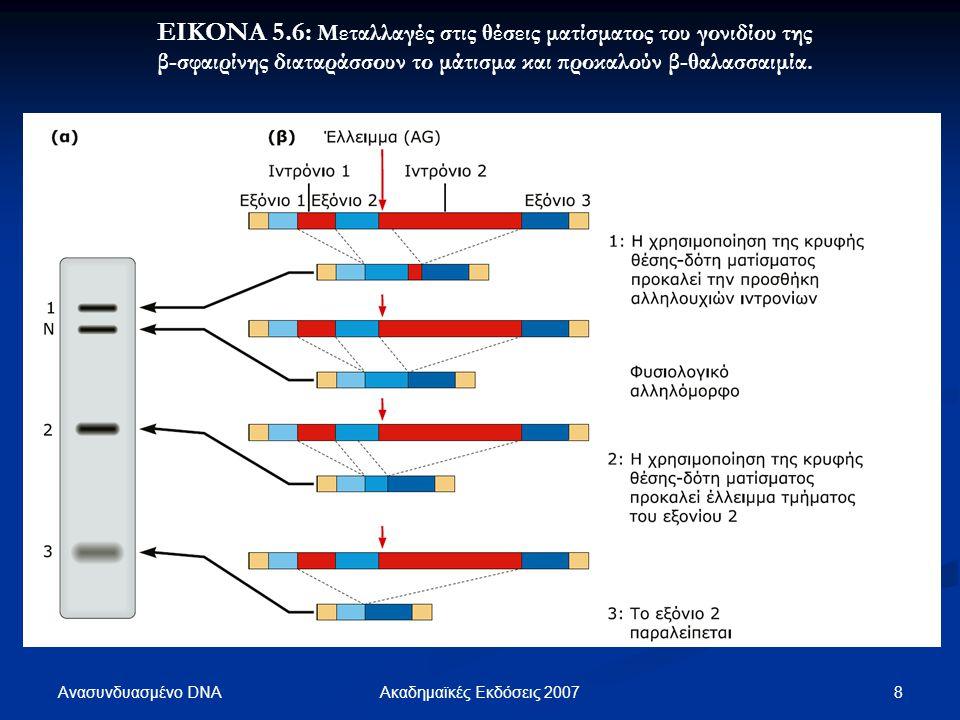 Ανασυνδυασμένο DNA 8Ακαδημαϊκές Εκδόσεις 2007 ΕΙΚΟΝΑ 5.6: Μεταλλαγές στις θέσεις ματίσματος του γονιδίου της β-σφαιρίνης διαταράσσουν το μάτισμα και π