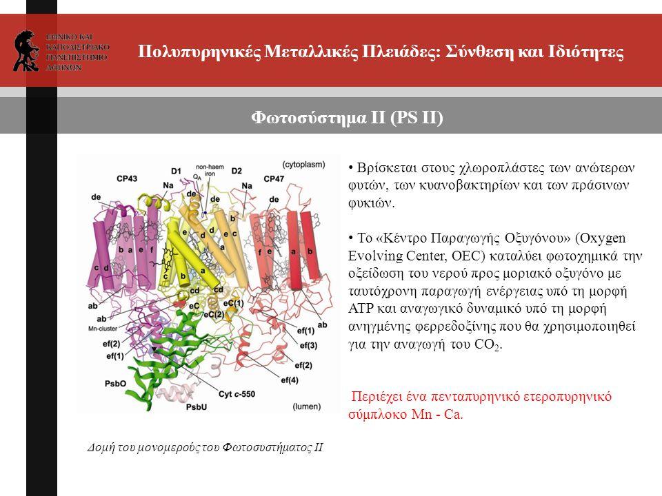 Πολυπυρηνικές Μεταλλικές Πλειάδες: Σύνθεση και Ιδιότητες Φωτοσύστημα ΙΙ (PS II) Βρίσκεται στους χλωροπλάστες των ανώτερων φυτών, των κυανοβακτηρίων και των πράσινων φυκιών.