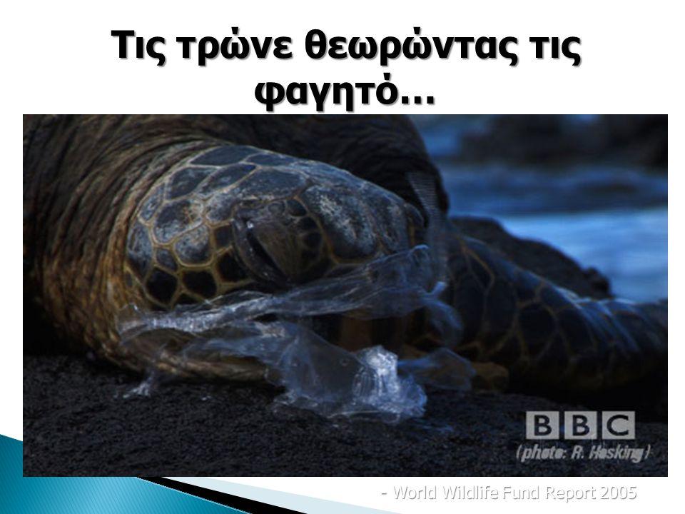 200 διαφορετικά είδη θαλάσσιας ζωής, φάλαινες, δελφίνια, φώκιες και χελώνες πεθαίνουν.