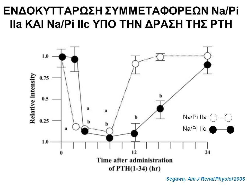 Segawa, Am J Renal Physiol 2006 Na/Pi IIa Na/Pi IIc