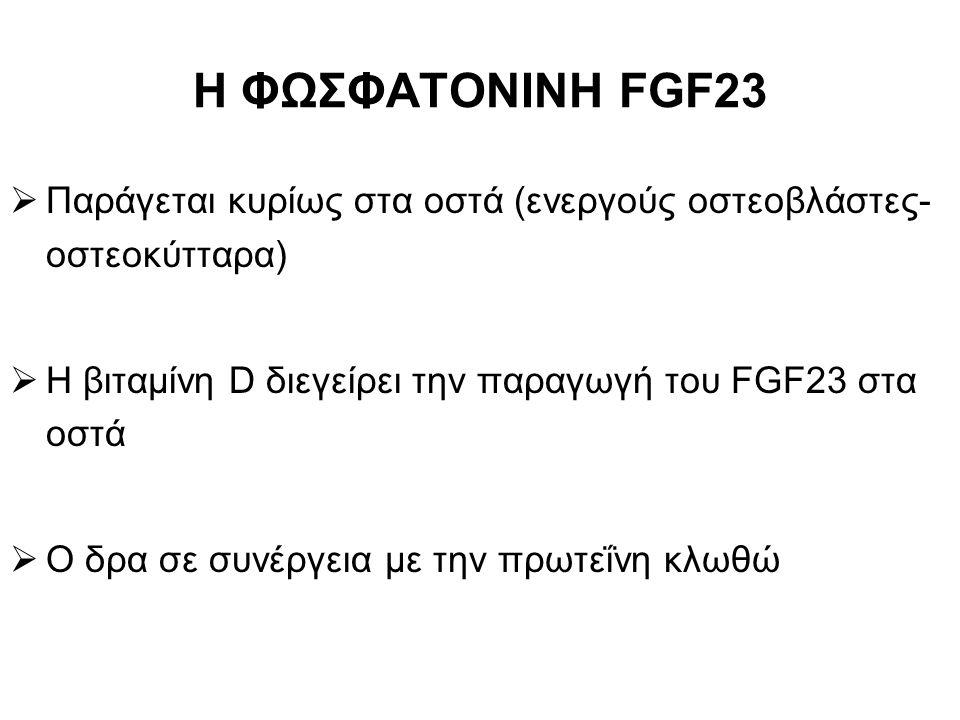 Η ΦΩΣΦΑΤΟΝΙΝΗ FGF23  Παράγεται κυρίως στα οστά (ενεργούς οστεοβλάστες- οστεοκύτταρα)  Η βιταμίνη D διεγείρει την παραγωγή του FGF23 στα οστά  Ο δρα