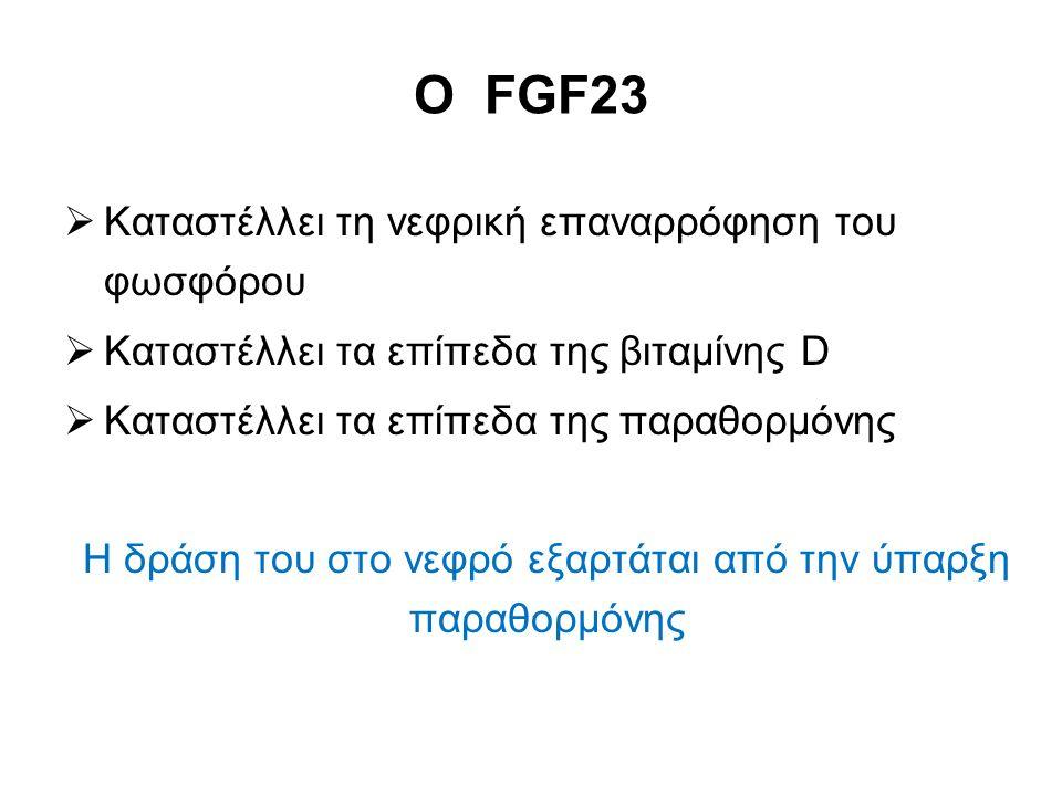 Ο FGF23  Καταστέλλει τη νεφρική επαναρρόφηση του φωσφόρου  Καταστέλλει τα επίπεδα της βιταμίνης D  Καταστέλλει τα επίπεδα της παραθορμόνης Η δράση