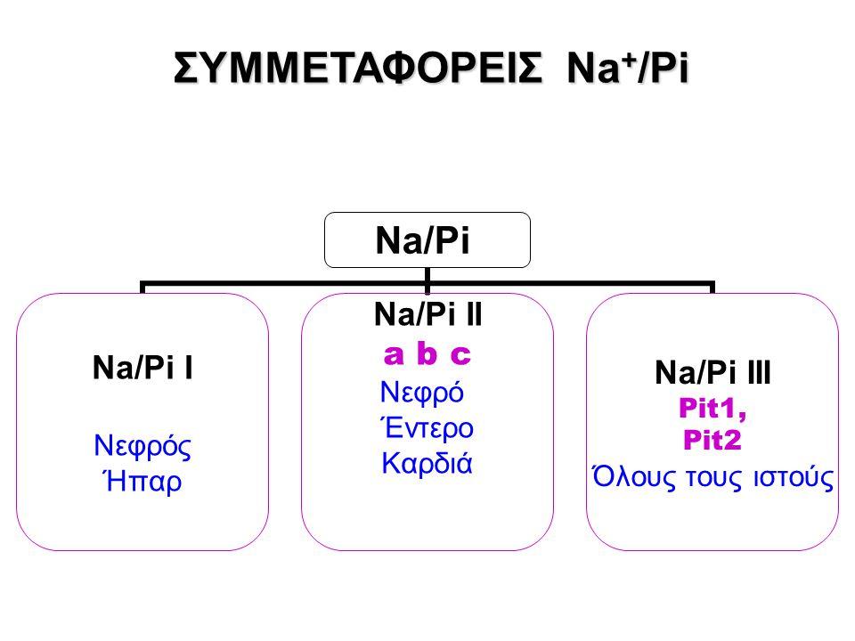 ΣΥΜΜΕΤΑΦΟΡΕΙΣ Νa + /Ρi Νa/Pi Na/Pi I Νεφρός Ήπαρ Na/Pi II a b c Νεφρό Έντερο Καρδιά Na/Pi III Pit1, Pit2 Όλους τους ιστούς