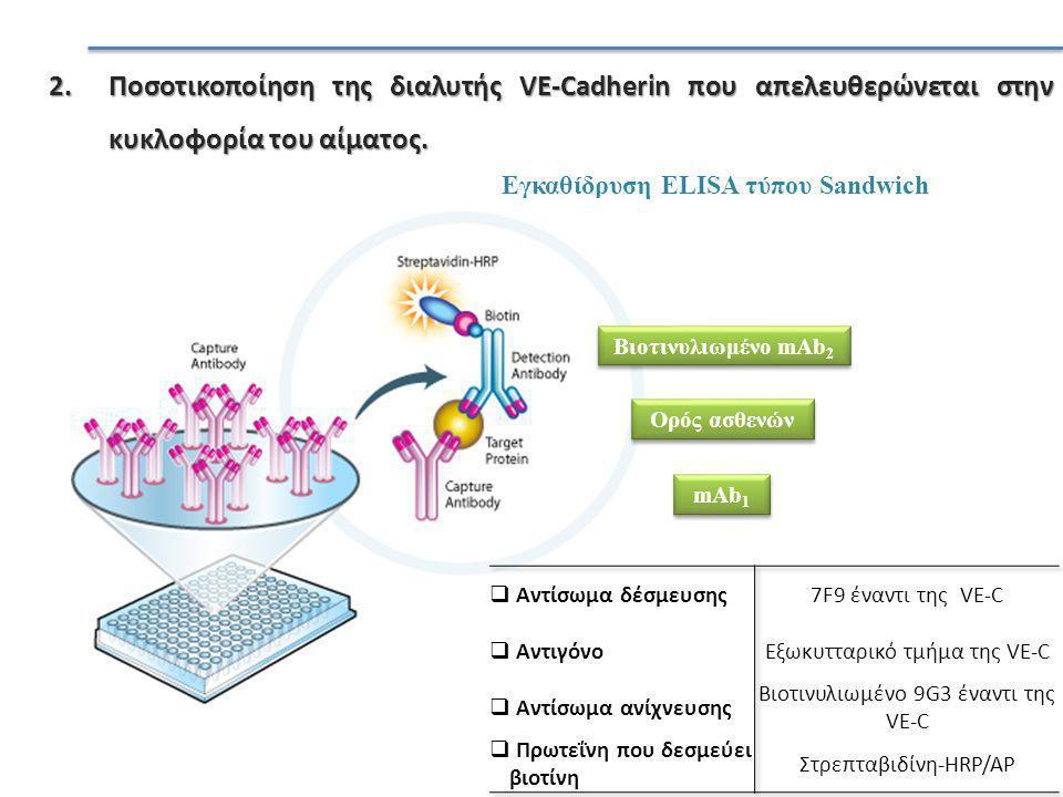 2.Ποσοτικοποίηση της διαλυτής VE-Cadherin που απελευθερώνεται στην κυκλοφορία του αίματος.