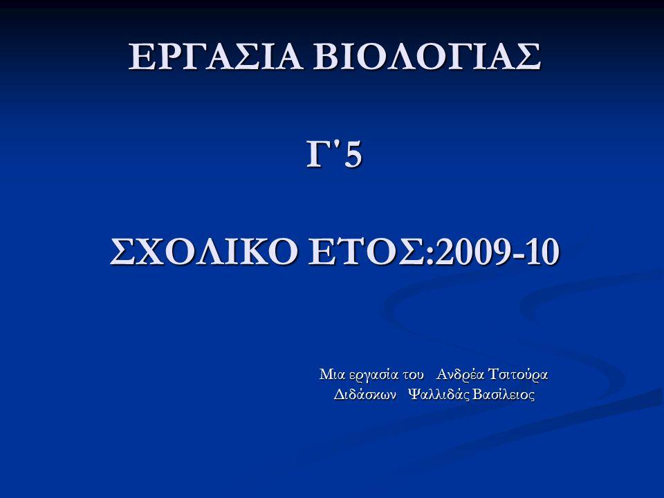 ΕΡΓΑΣΙΑ ΒΙΟΛΟΓΙΑΣ Γ΄5 ΣΧΟΛΙΚΟ ΕΤΟΣ:2009-10 Mια εργασία του Ανδρέα Τσιτούρα Διδάσκων Ψαλλιδάς Βασίλειος