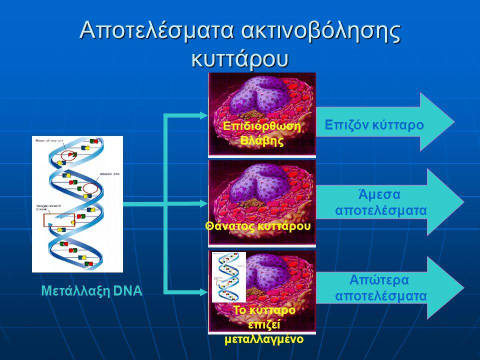 ΑΜΕΣΑ (Ερύθημα, Καταρράκτης, Νέκρωση δέρματος) ΑΠΟΤΕΛΕΣΜΑΤΑ ΑΚΤΙΝΟΒΟΛΙΩΝ ΣΤΟΧΑΣΤΙΚΑ (Καρκινογένεση, Λευχαιμία, Γενετικά) Δόση Πιθανότητα Δόση Πιθανότητα Κατώφλι Δόση Σοβαρότητα Δόση Σοβαρότητα