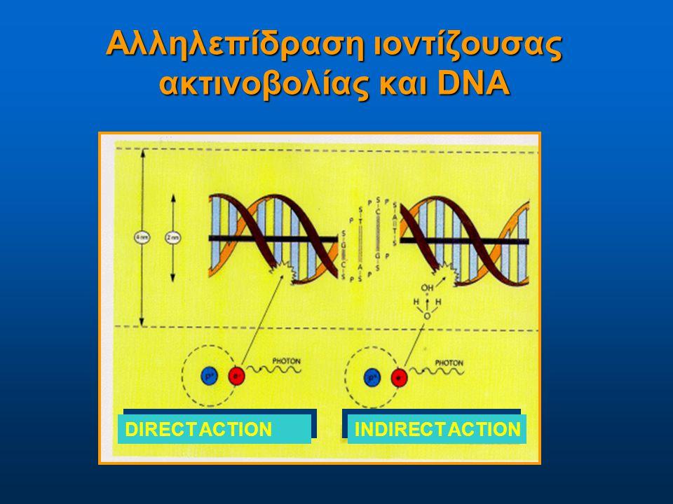 Αλληλεπίδραση ιοντίζουσας ακτινοβολίας και DNA DIRECT ACTION INDIRECT ACTION