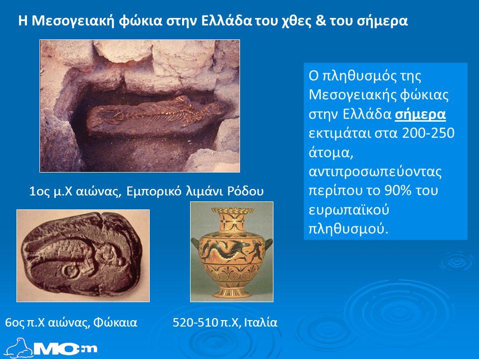 520-510 π.Χ, Ιταλία6ος π.Χ αιώνας, Φώκαια 1ος μ.Χ αιώνας, Εμπορικό λιμάνι Ρόδου Ο πληθυσμός της Μεσογειακής φώκιας στην Ελλάδα σήμερα εκτιμάται στα 200-250 άτομα, αντιπροσωπεύοντας περίπου το 90% του ευρωπαϊκού πληθυσμού.