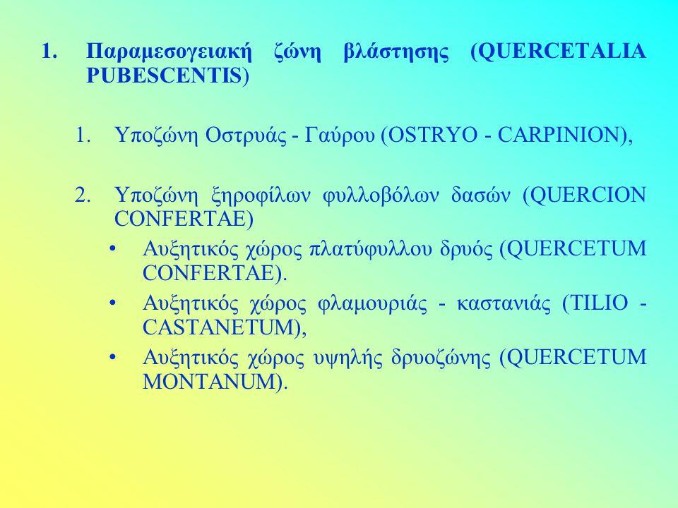 1.Παραμεσογειακή ζώνη βλάστησης (QUERCETALIA PUBESCENTIS) 1.Υποζώνη Οστρυάς - Γαύρου (OSTRYO - CARPINION), 2.Υποζώνη ξηροφίλων φυλλοβόλων δασών (QUERC