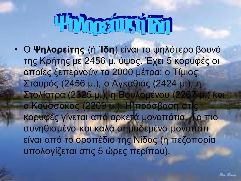 Ο Ψηλορείτης (ή Ίδη) είναι το ψηλότερο βουνό της Κρήτης με 2456 μ. ύψος. Έχει 5 κορυφές οι οποίες ξεπερνούν τα 2000 μέτρα: ο Τίμιος Σταυρός (2456 μ.),