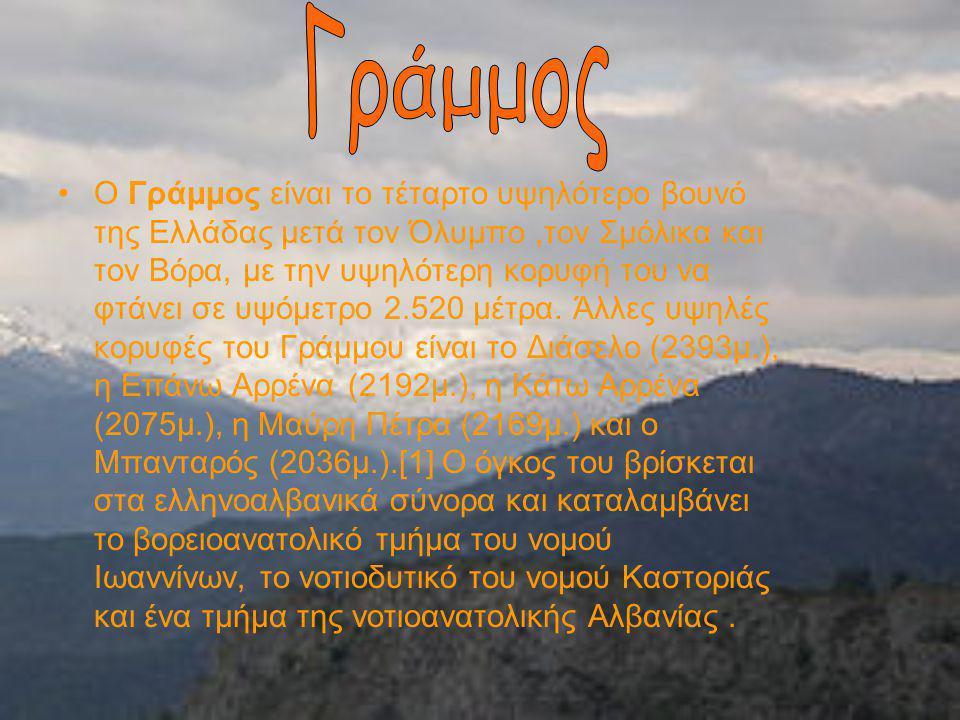 Ο Βόρας (ή Καϊμακτσαλάν, σλαβομακεδονικά: Ниџе, Νίτζε) είναι το τρίτο υψηλότερο βουνό της Ελλάδας και βρίσκεται στο βόρειο τμήμα του νομού Πέλλας έως τα όρια με το νομό Φλώρινας.