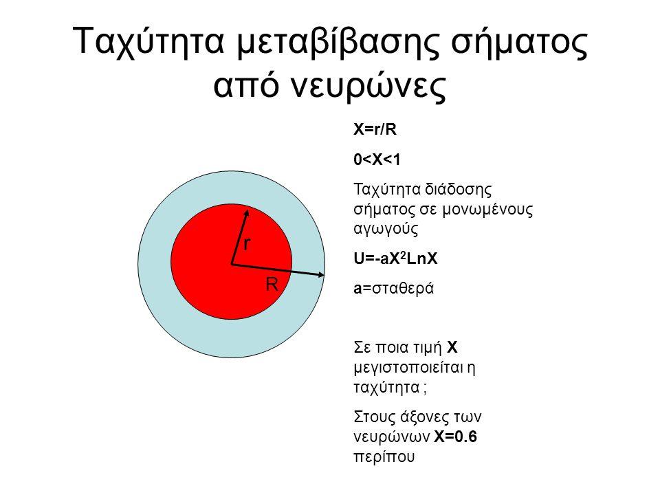 Ταχύτητα μεταβίβασης σήματος από νευρώνες r R X=r/R 0<X<1 Ταχύτητα διάδοσης σήματος σε μονωμένους αγωγούς U=-aX 2 LnX a=σταθερά Σε ποια τιμή Χ μεγιστοποιείται η ταχύτητα ; Στους άξονες των νευρώνων Χ=0.6 περίπου