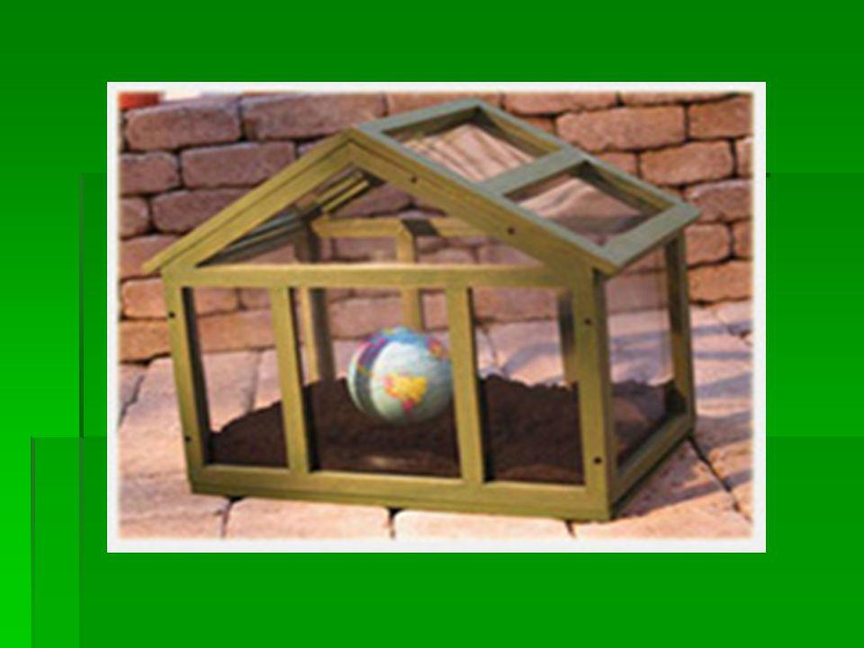 Πιο συγκεκριμένα, με τον όρο βιομάζα εννοούμε:  τα φυτικά και δασικά υπολείμματα (καυσόξυλα, κλαδοδέματα, άχυρα, πριονίδια, ελαιοπυρήνες, κουκούτσια)  τα ζωικά απόβλητα (κοπριά, άχρηστα αλιεύματα)  τα φυτά που καλλιεργούνται στις ενεργειακές φυτείες για να χρησιμοποιηθούν ως πηγή ενέργειας  τα αστικά απορρίμματα και τα υπολείμματα της βιομηχανίας τροφίμων και της αγροτικής βιομηχανίας.