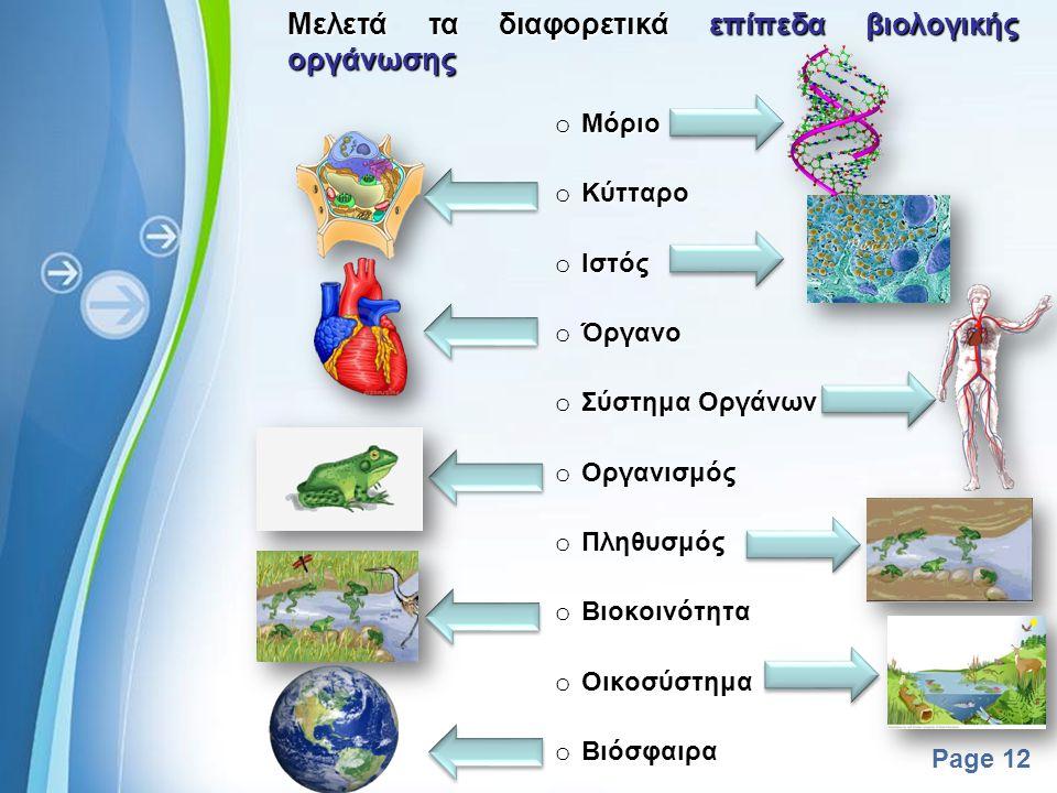 Powerpoint Templates Page 11 Μελετά τα διαφορετικά επίπεδα βιολογικής οργάνωσης Μελετά τα διαφορετικά επίπεδα βιολογικής οργάνωσης o Οργανισμός o Πληθ
