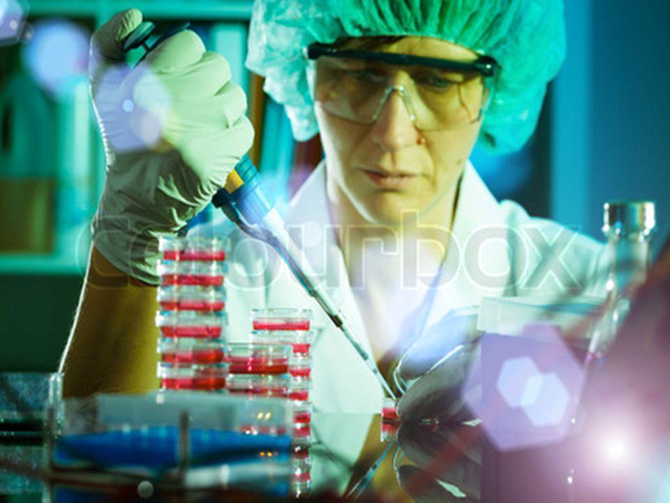 Powerpoint Templates Page 28 Το παρόν και το μέλλον της Βιολογίας στην Κύπρο Βιολόγοι εργάζονται στις πιο κάτω υπηρεσίες: