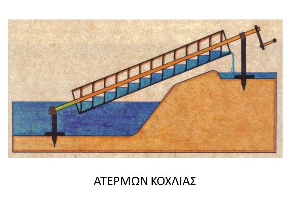 ΑΤΕΡΜΩΝ ΚΟΧΛΙΑΣ