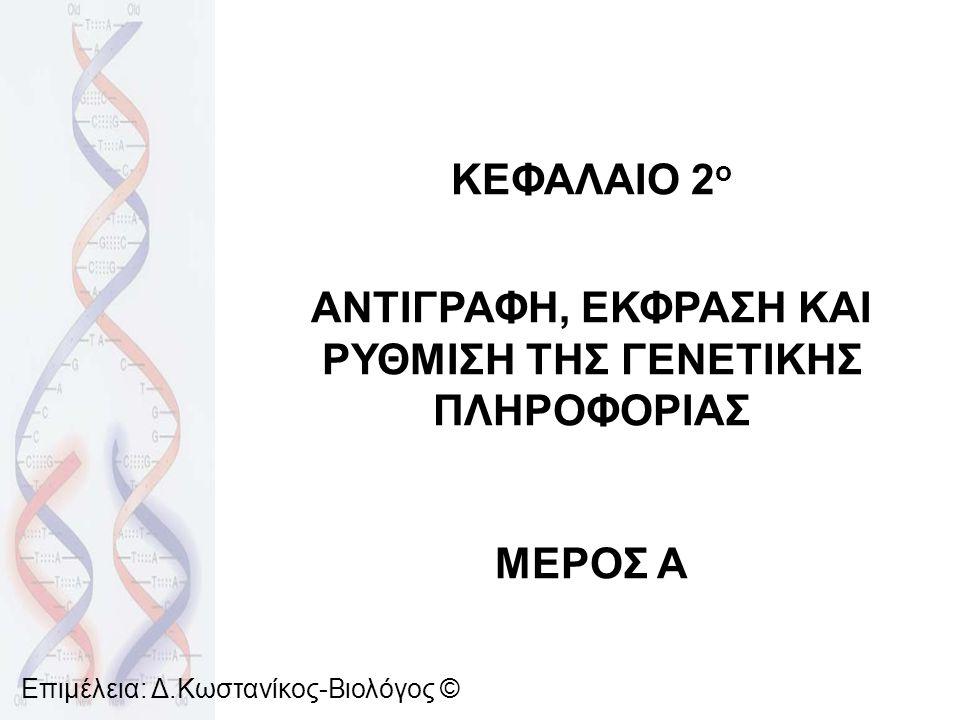 ΑΝΤΙΓΡΑΦΗ ΤΟΥ DNA Γίνεται μόνο μια φορά πριν την κυτταρική διαίρεση, στη διάρκεια της μεσόφασης Ευκαρυωτικά κύτταρα: πυρήνας, μιτοχόνδρια, χλωροπλάστες Προκαρυωτικά κύτταρα: κυτταρόπλασμα Ιοί: εσωτερικό του κυττάρου ξενιστή Ημισυντηρητικός μηχανισμός διπλασιασμού του DNA: 2 θυγατρικά μόρια, πανομοιότυπα με το μητρικό Αποτελούνται από 1 παλιά και 1 καινούργια αλυσίδα Επιμέλεια: Δ.Κωστανίκος-Βιολόγος ©