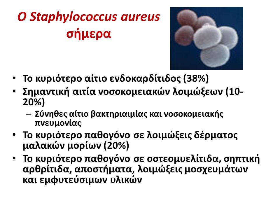 O Staphylococcus aureus σήμερα Το κυριότερο αίτιο ενδοκαρδίτιδος (38%) Σημαντική αιτία νοσοκομειακών λοιμώξεων (10- 20%) – Σύνηθες αίτιο βακτηριαιμίας