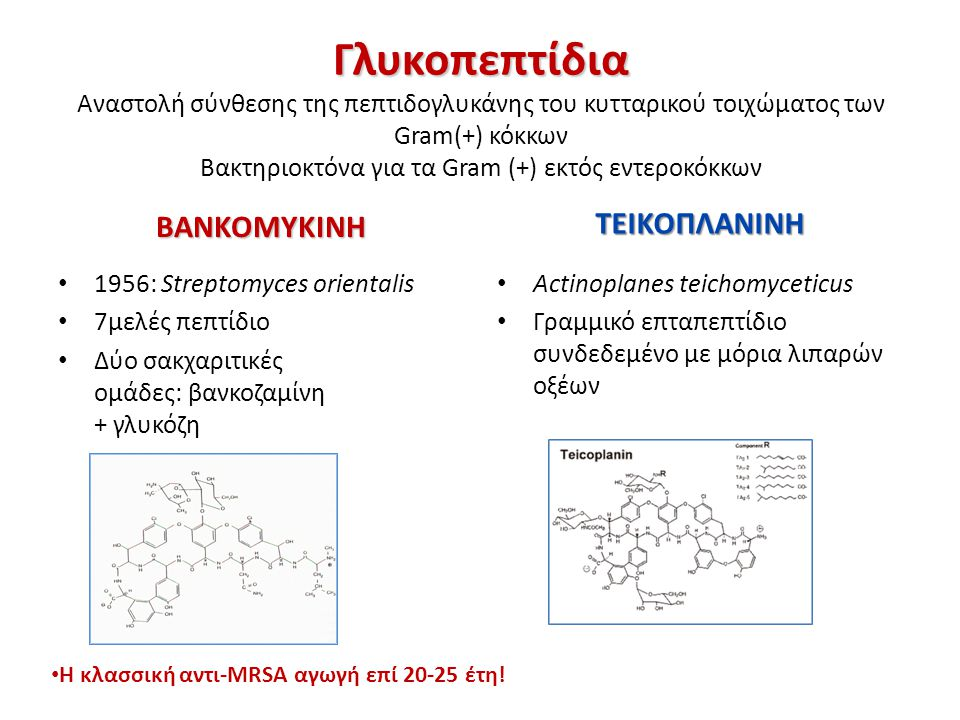 Daptomycin toxicity In animal toxicity studies, muscle damage with increased CPK occurred when the drug was dosed frequently Because daptomycin is rapidly bactericidal, it can be administered once a day to achieve high peaks alternating with periods whent the drug is cleared.