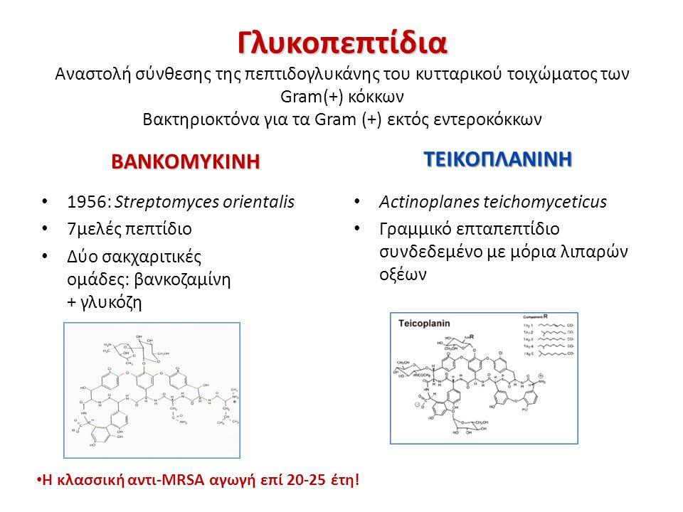 Αντιμικροβιακό φάσμα γλυκοπεπτιδίων Μόνο Gram θετικά παθογόνα Συνήθη  Staphylococcus aureus Bacillus spp  Κοαγκουλάση-αρνητικοί σταφυλόκοκκοι (CoNS)  Streptococci (A, B, C, G)  Viridans streptococci  Streptococcus pneumoniae  Enterococci Λιγότερο συνήθη  Listeria sp  Corynebacteria spp  Clostridium difficile  Cl.