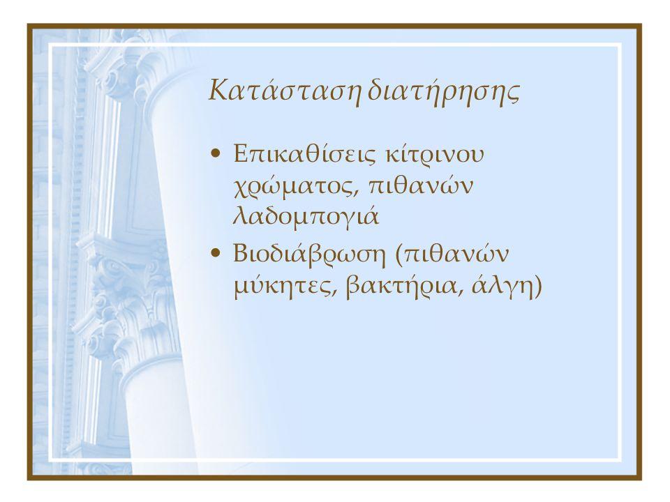 Κατάσταση διατήρησης Επικαθίσεις κίτρινου χρώματος, πιθανών λαδομπογιά Βιοδιάβρωση (πιθανών μύκητες, βακτήρια, άλγη)
