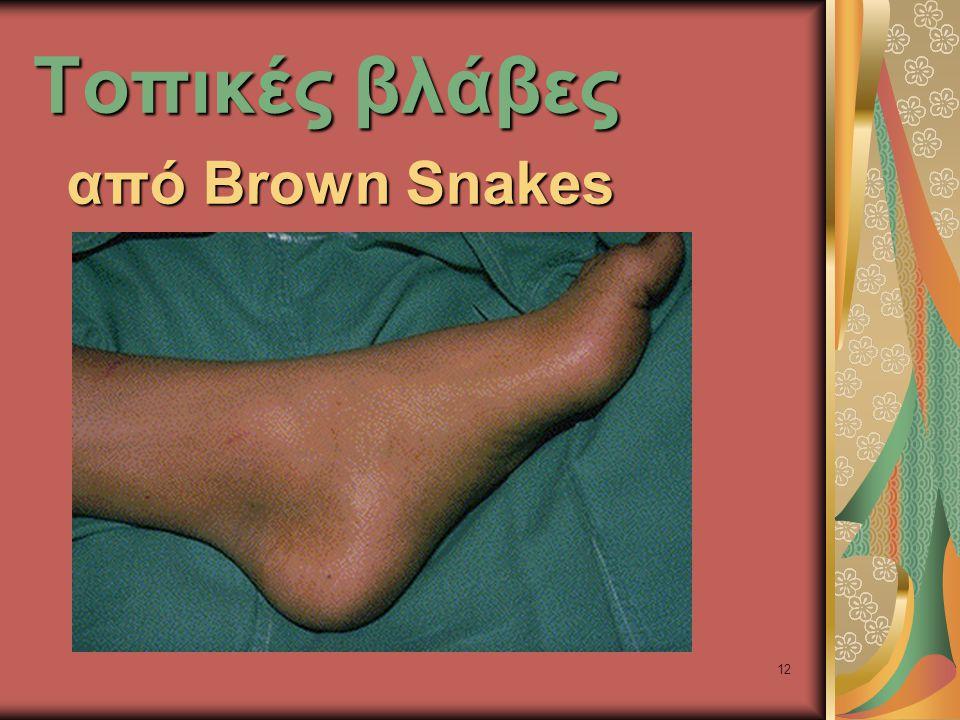 12 Τοπικές βλάβες από Brown Snakes