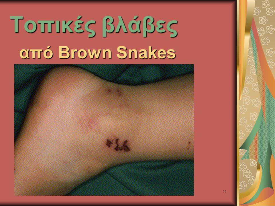14 Τοπικές βλάβες από Brown Snakes