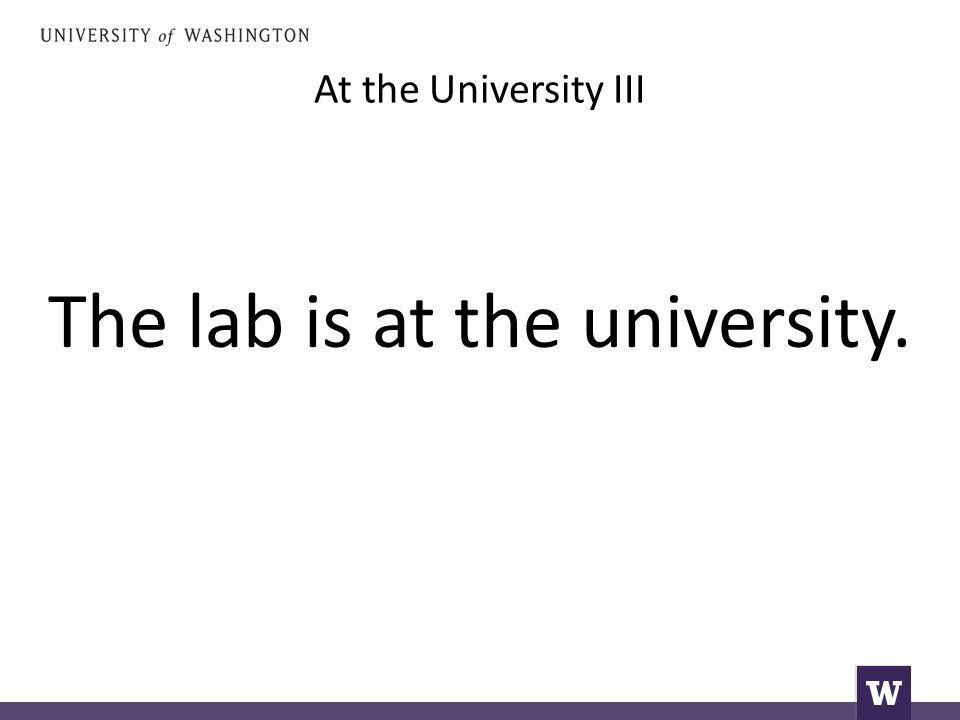 At the University III The lab is at the university.