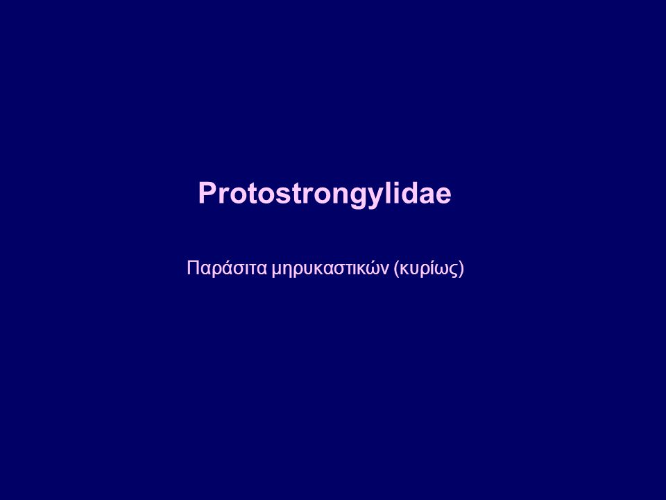 Protostrongylidae Παράσιτα μηρυκαστικών (κυρίως)